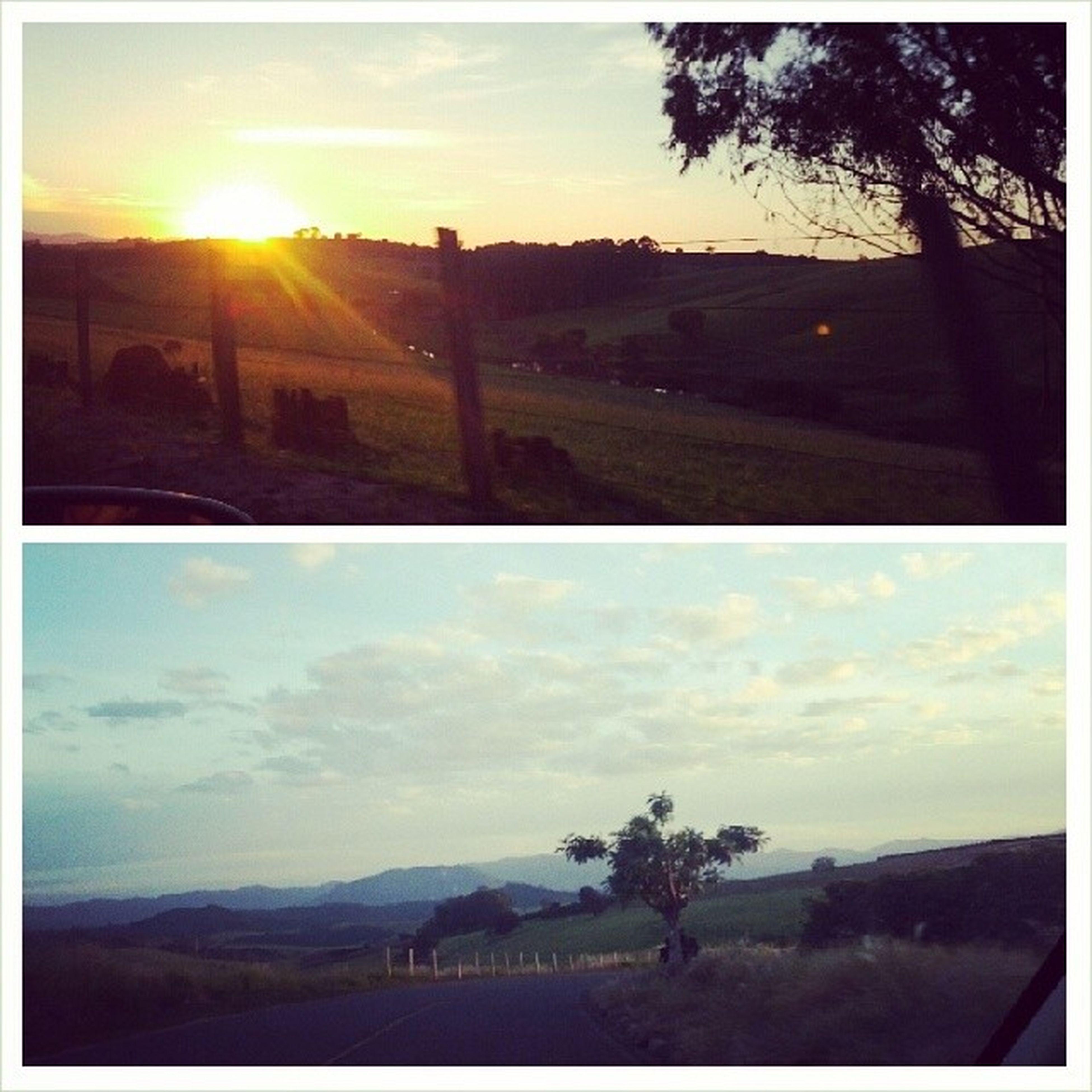 sunset, sun, landscape, sky, tree, tranquil scene, tranquility, scenics, sunlight, transportation, transfer print, beauty in nature, sunbeam, nature, silhouette, field, road, auto post production filter, lens flare, horizon over land