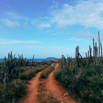 Llegando al destino...! Macanao IslaDeMargarita Venezuela Vscocam Adventureseries January