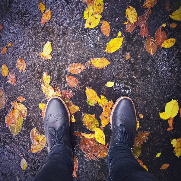 Adult Autumn Autumn Colors Autumn Leaves Budapest Day High Angle View Horizontal Human Body Part Lifestyles Low Section One Person Only Women Outdoors People Person Personal Perspective Rain Real People Shoe Standing Yellow ősz