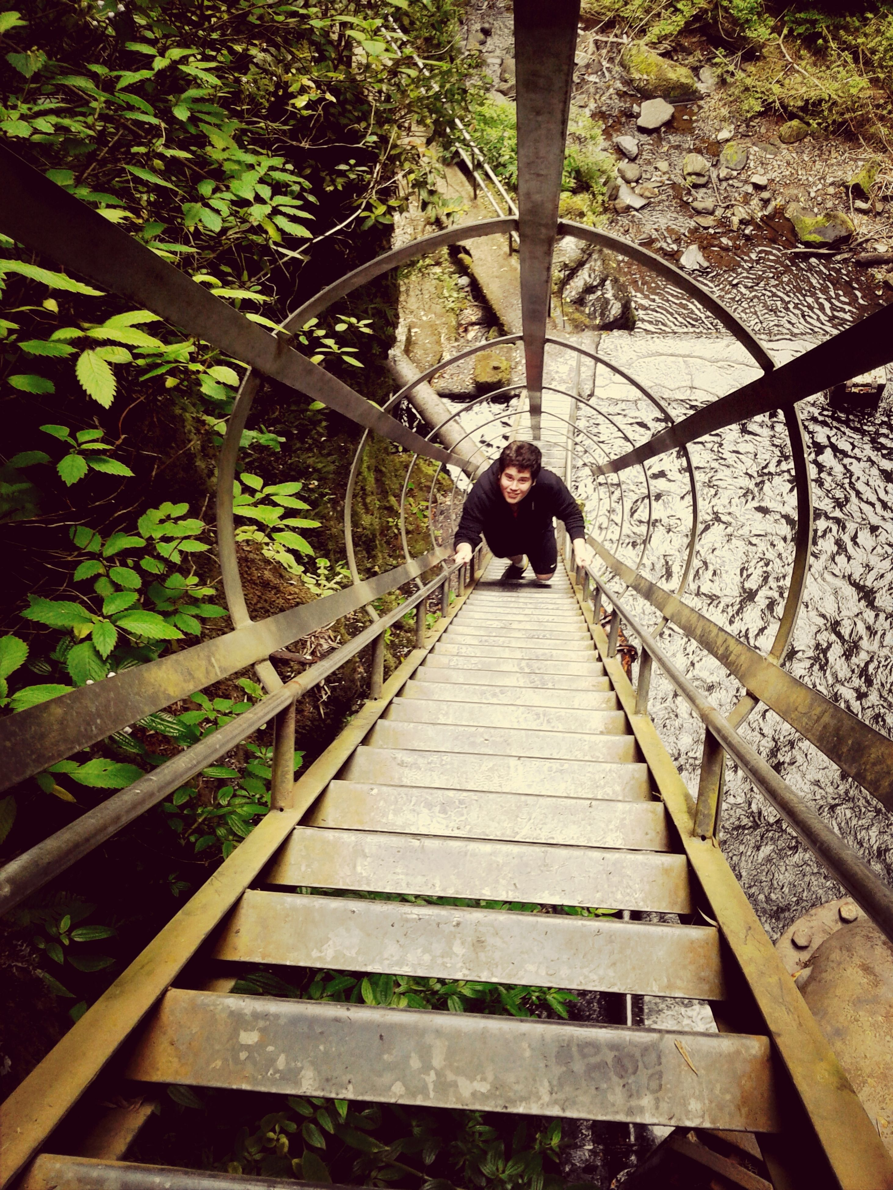 the way forward, railing, steps, steps and staircases, footbridge, tree, leisure activity, lifestyles, staircase, full length, wood - material, boardwalk, walking, rear view, diminishing perspective, bridge - man made structure, stairs, men