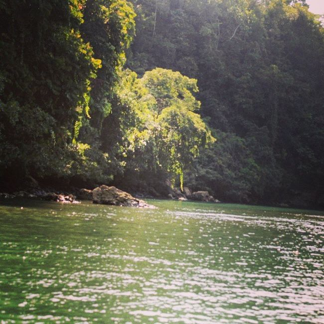Nature River INDONESIA Greencanyon  Pangandaran Java River EOS 1100d Greatview Niceview Natural