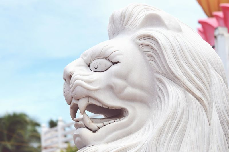 Heart Of A Lion Lion Temple Sculpture Travelling Travel Photography
