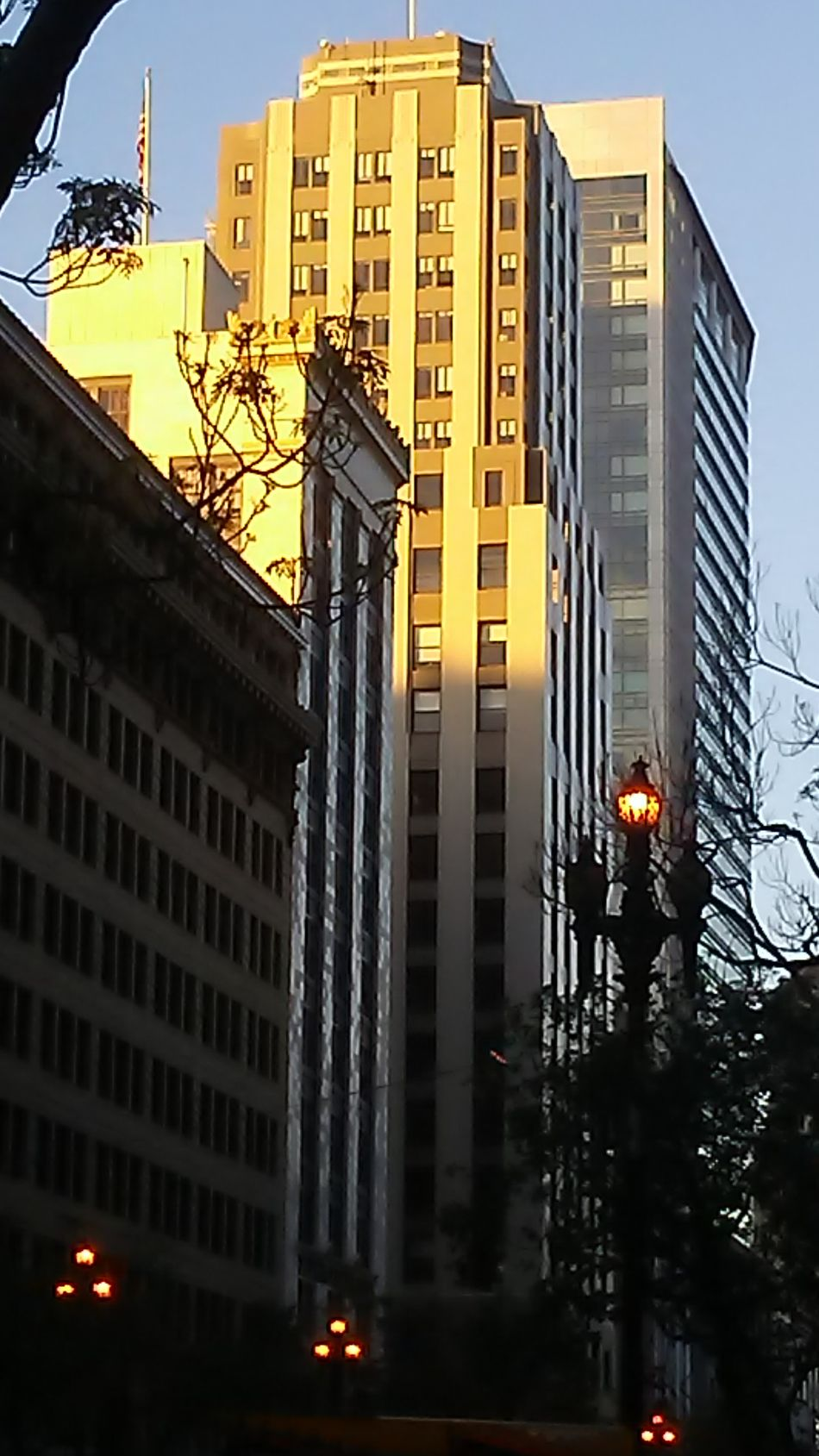 City Architecture Sunset Skyscraper Building Exterior Built Structure Business Finance And Industry No People Tree Clock Outdoors Sky Cityscape San Francisco Day Structure