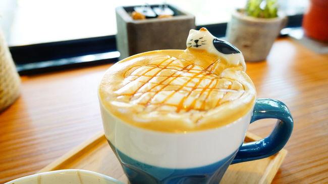 Coffee Cozytime Kitty Latte