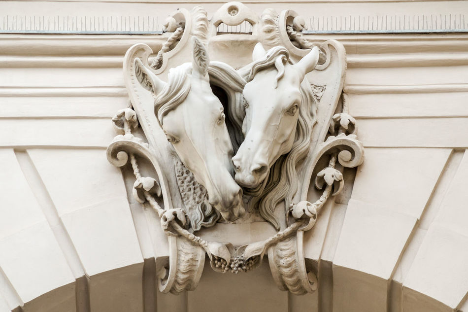 Ornament at a building in vienna. Architecture Art Art And Craft Building Exterior Built Structure Close-up Day Europe Horse Horses No People Ornament Outdoors Relief Relief Sculpture Sculpture Statue Tourism Two Vienna