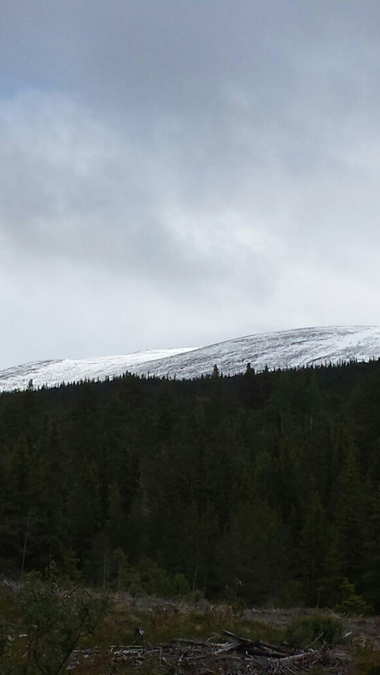 Snow Mountains Härjedalen Ljungdalen