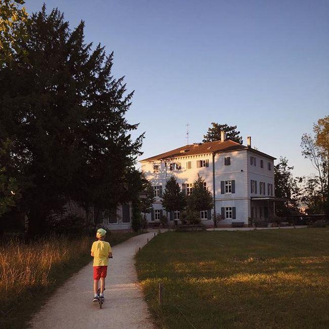 A pathway to Freie Musikschule in Basel . Baselswitzerland Visitswitzerland Igersbasel Igerssuisse InLOVEwithSwitzerland Mextures Snapseed Vscocam VSCO @super_switzerland Baselbuzz