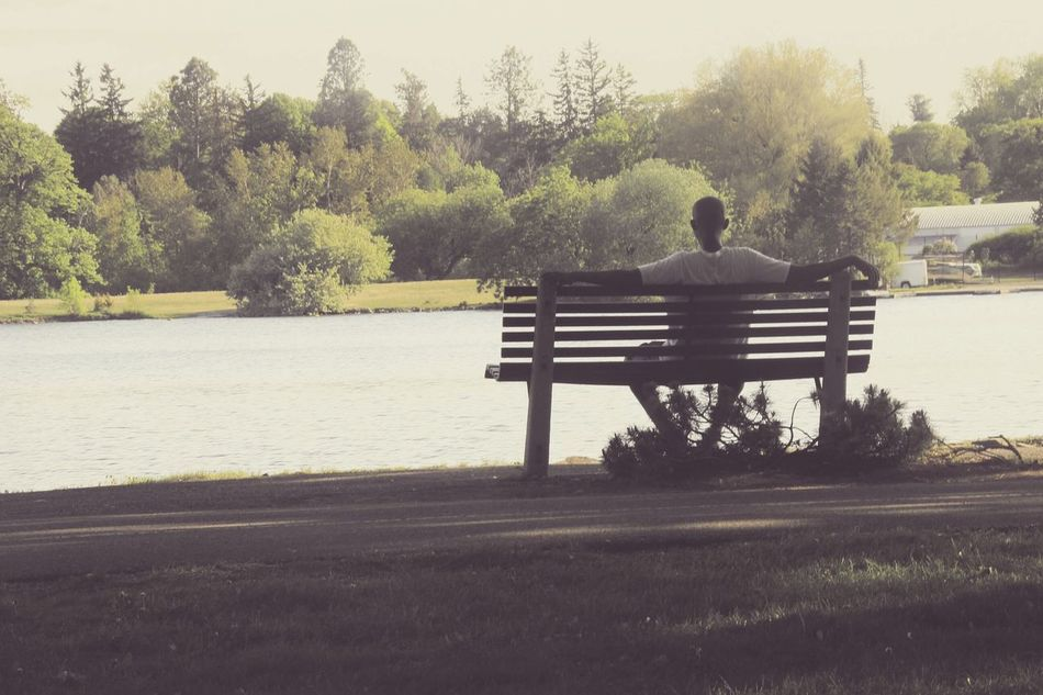 Clearing his thoughts. Driftingaway Thoughts Tree Bench Road Relaxation Empty Sitting Men Park Bench Rear View Solitude Clear Sky Park - Man Made Space Day Water Countryside Plant Sunny Outdoors Tranquil Scene Tranquility