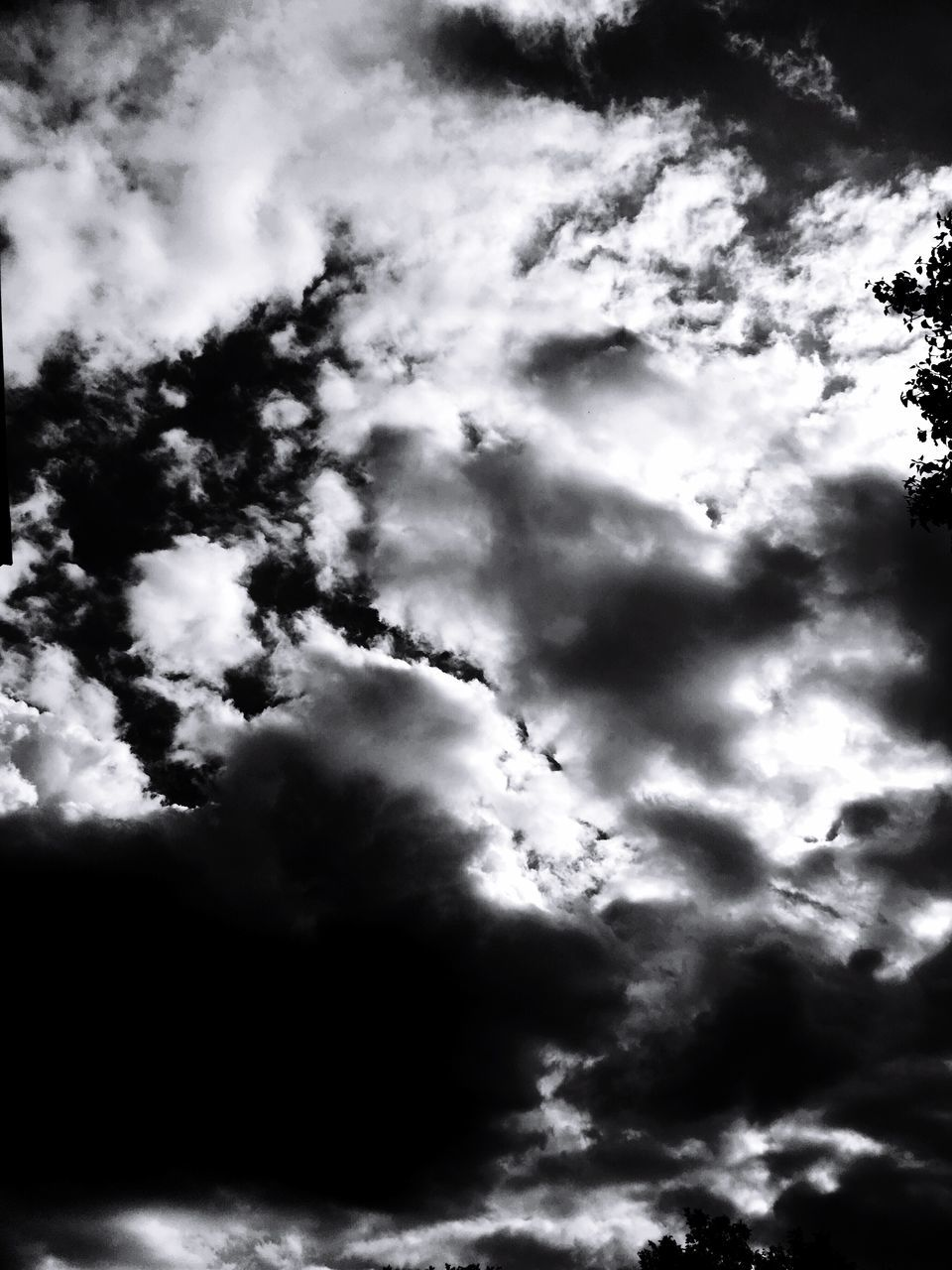 beauty in nature, nature, sky, low angle view, cloud - sky, cloudscape, atmospheric mood, backgrounds, scenics, majestic, tranquility, dramatic sky, weather, no people, sky only, outdoors, idyllic, tranquil scene, awe, day, silhouette, full frame, storm cloud, tree