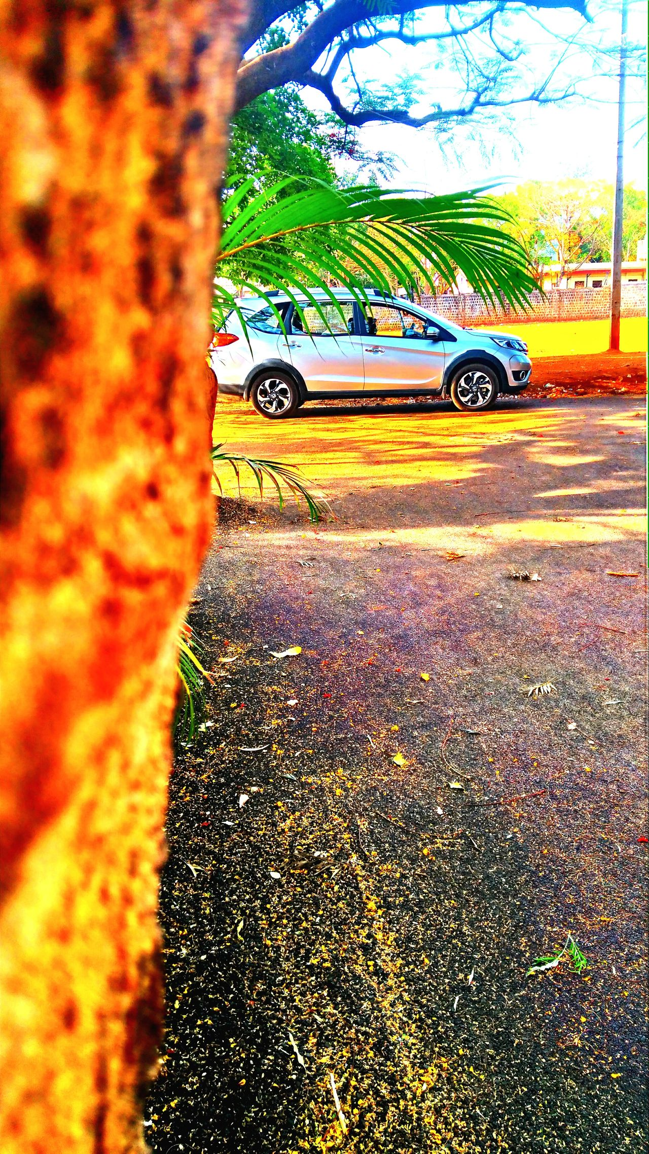 Clicked it!