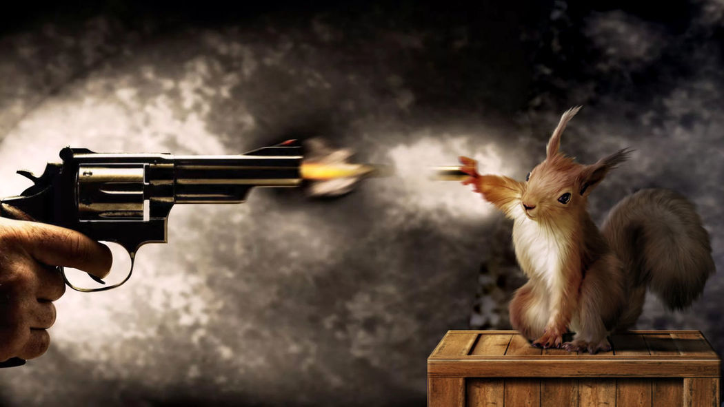 Adult Gun MatrixReloaded Night Photoshop Photoshop Edit Shooting A Weapon Shot Squirrel