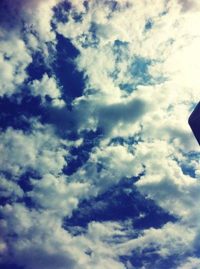 Enjoying The Sun Sunshine Sea Relaxing Meeting Friends Taking Photos Sky Blue Enjoying Life