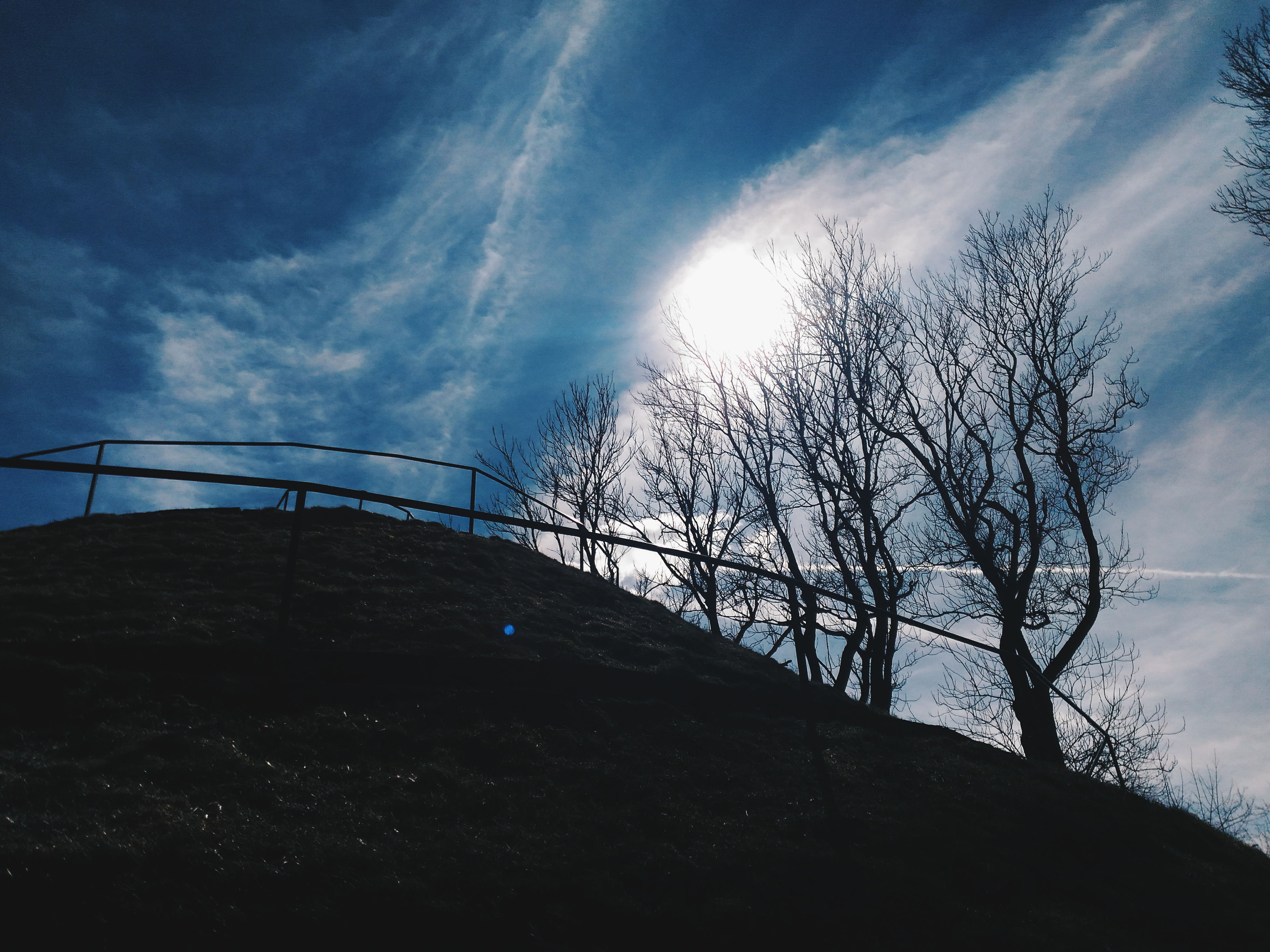 sky, sun, tree, sunlight, cloud - sky, silhouette, low angle view, tranquility, bare tree, sunbeam, cloud, nature, tranquil scene, lens flare, beauty in nature, branch, scenics, blue, no people, built structure