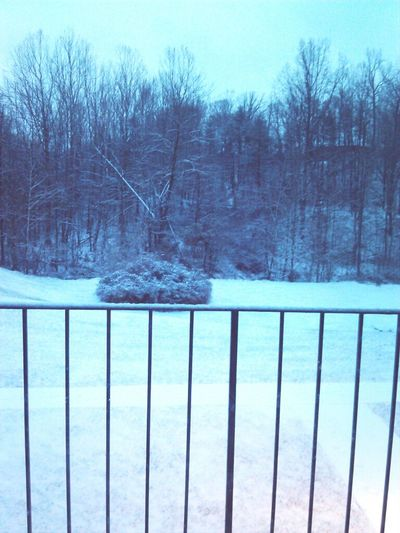 Oh how I hate when it snows in Virginia!