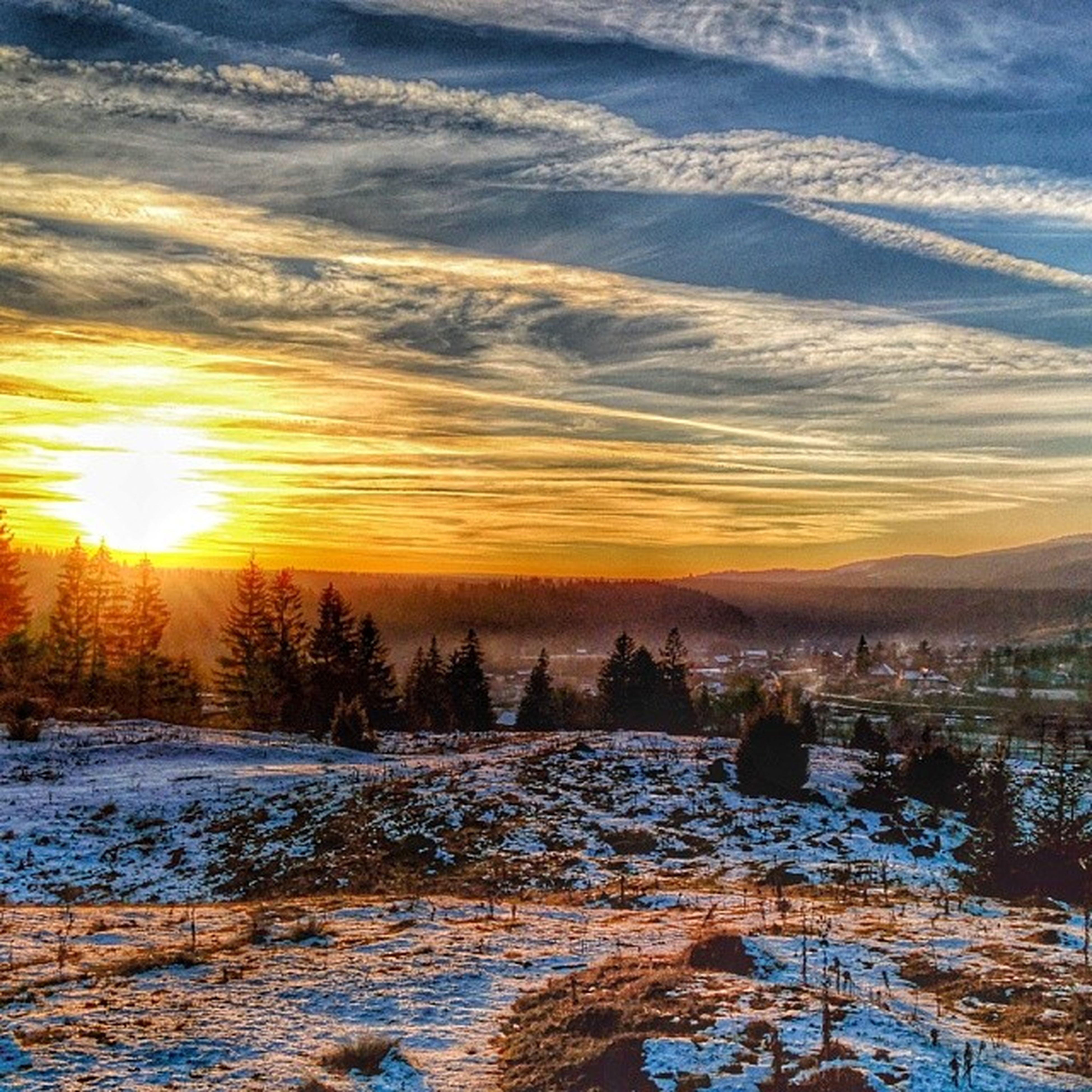 snow, winter, cold temperature, sunset, season, tranquil scene, tranquility, scenics, beauty in nature, sun, frozen, weather, orange color, nature, sky, landscape, covering, tree, sunlight, non-urban scene