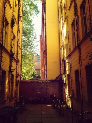 Backyard at Auguststraße by Nikoline Løgstrup