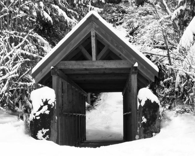 #beautifulbc #bridgetobrandywine #supernaturalBC Beauty In Nature Birdhouse Cold Temperature Day Gazebo House Nature No People Outdoors Snow Tree Winter Wood - Material