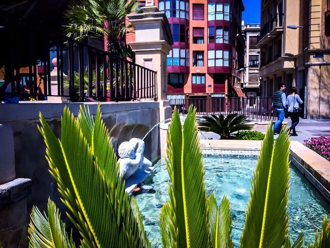 Murcia фонтан Day Dia день площадь