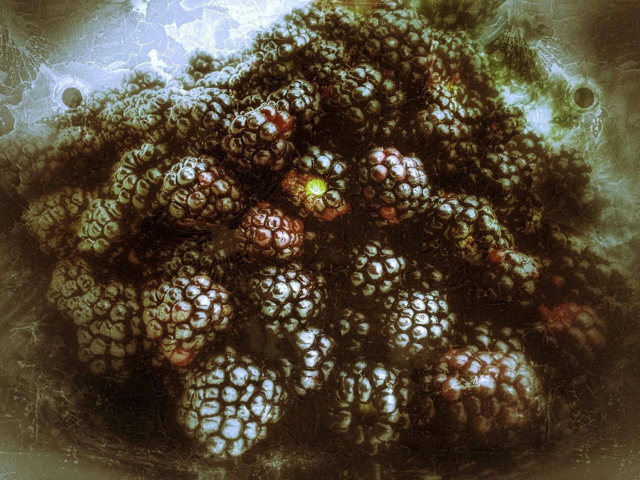 High Angle View Of Blackberries In Container