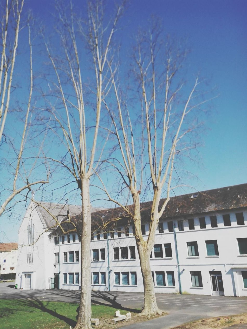 School Catholicschool Sky Frenchschool