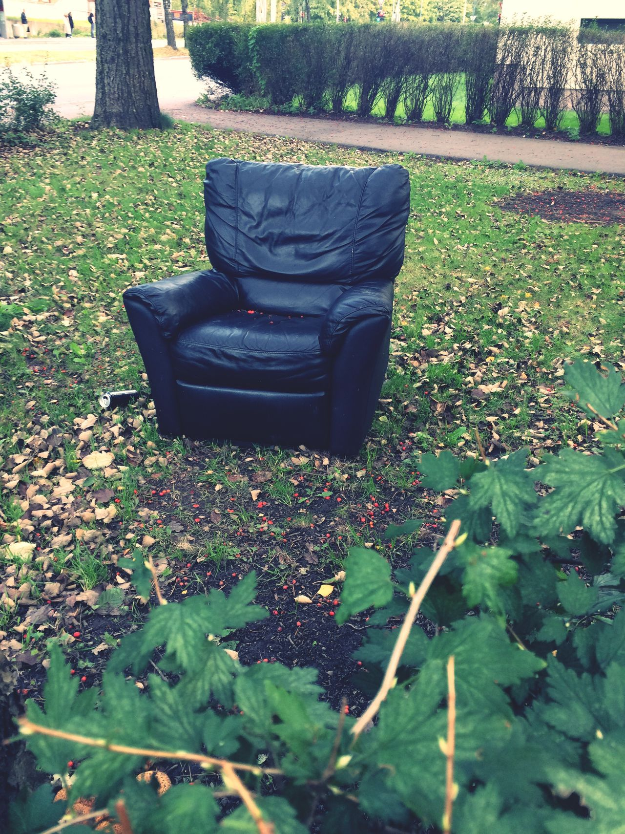 Grass Armchair Out Of Place  Bizarre Outdoors Full Length Relaxation Green Color Day Growth Tranquility Springtime Autumn Bringing The Indoors Out