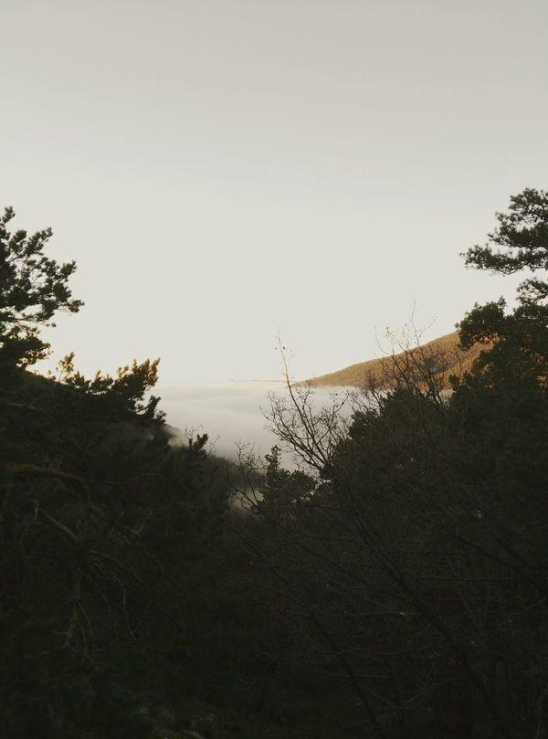 Amanecer Amaneceres Madrid Madrid Spain España Sierra Niebla Inviernografias Invierno