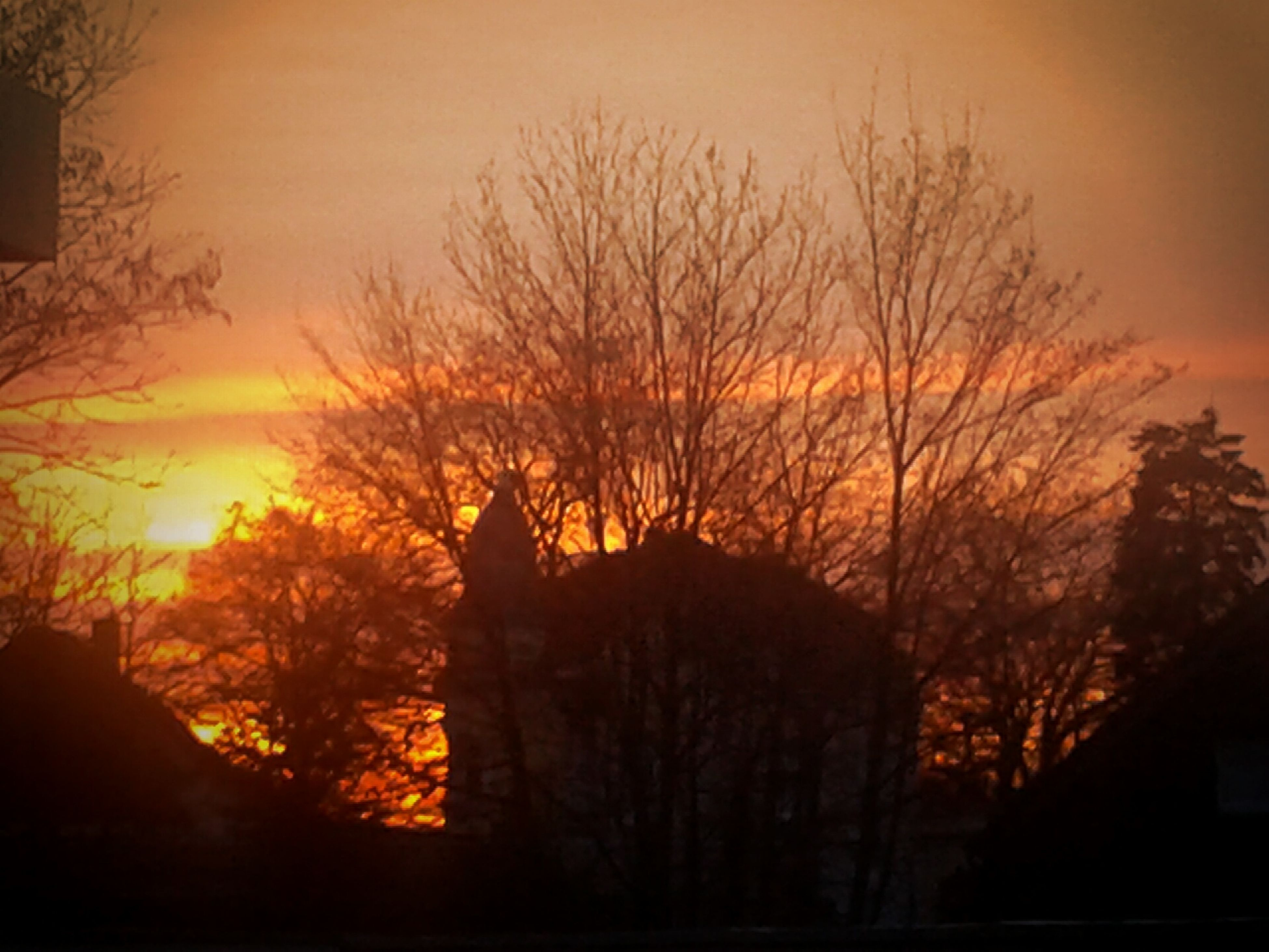 sunset, silhouette, bare tree, orange color, tree, building exterior, architecture, built structure, sky, branch, beauty in nature, nature, scenics, tranquility, dusk, low angle view, outdoors, no people, tranquil scene, cloud - sky