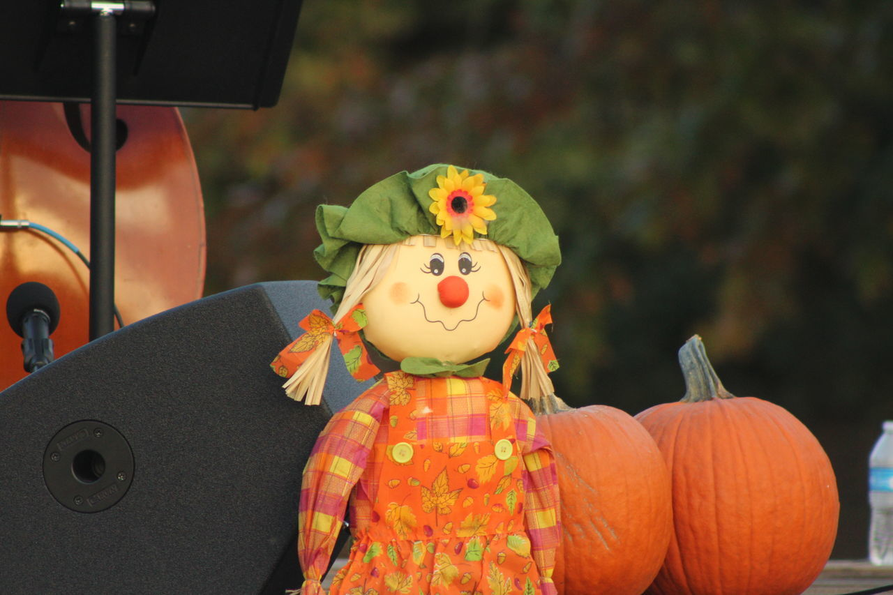 pumpkin, halloween, human representation, anthropomorphic face, jack o lantern, scarecrow, celebration, art and craft, focus on foreground, vegetable, close-up, no people, day, childhood, outdoors