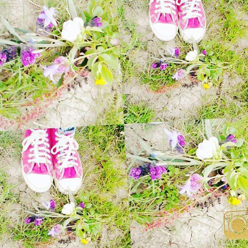 Sétatér Mezo virág cipő First Eyeem Photo