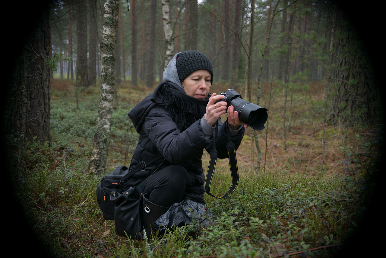 Woman Photographing With Camera In Forest