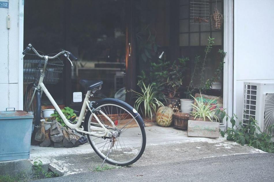Streetphotography Bicycle Urban Geometry