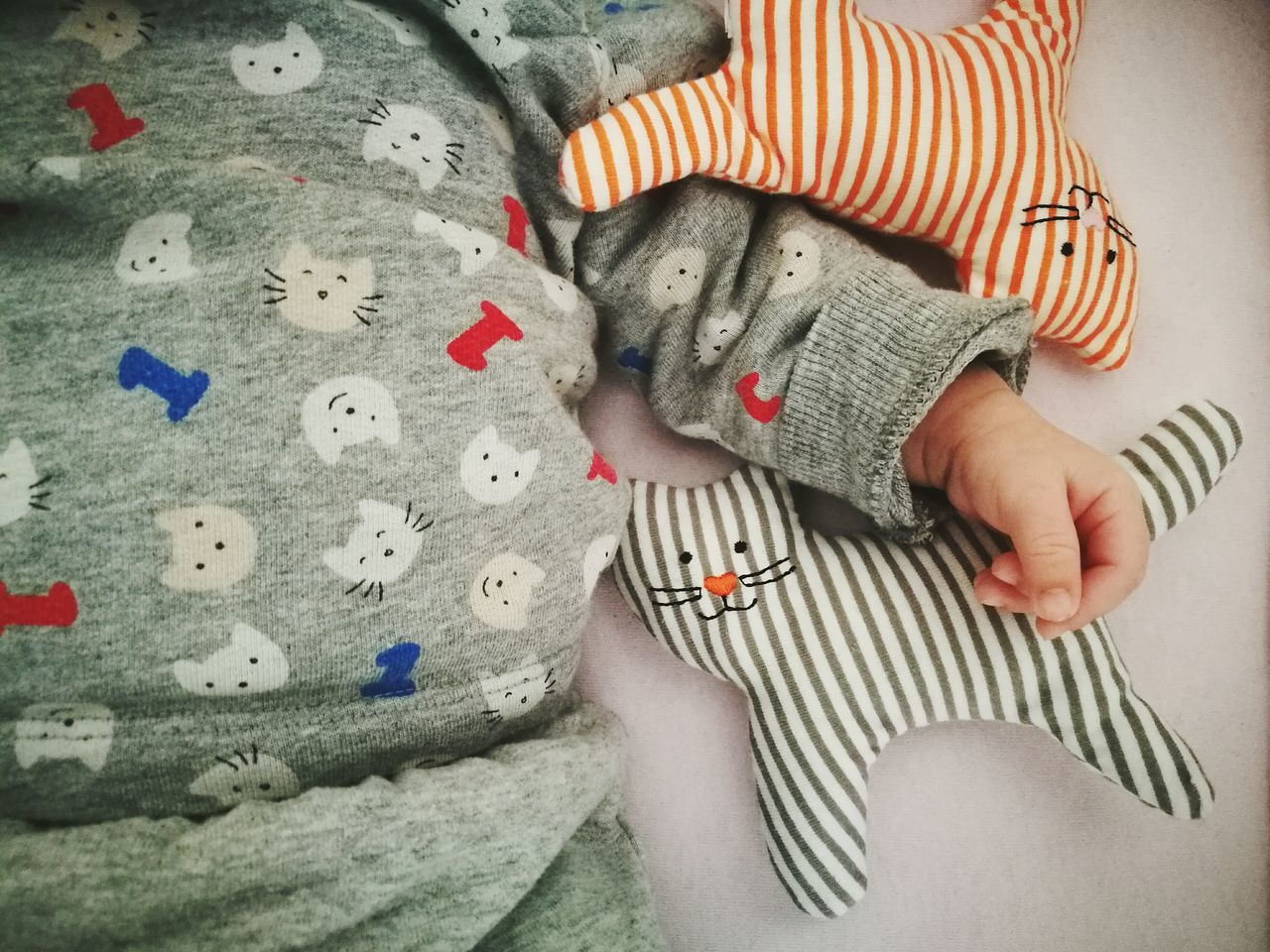 One Person Indoors  People Adults OnonlyOnlyCats Human Hand Human Heritage Babyhood Baby Baby Clothing Baby Hand Newborn Innocence Cat Cats Catoftheday Motherhood Childhood One Girl Only Innocence Of Youth Animal Themes Close-up Human Body Part Beautifully Organized My Year My View