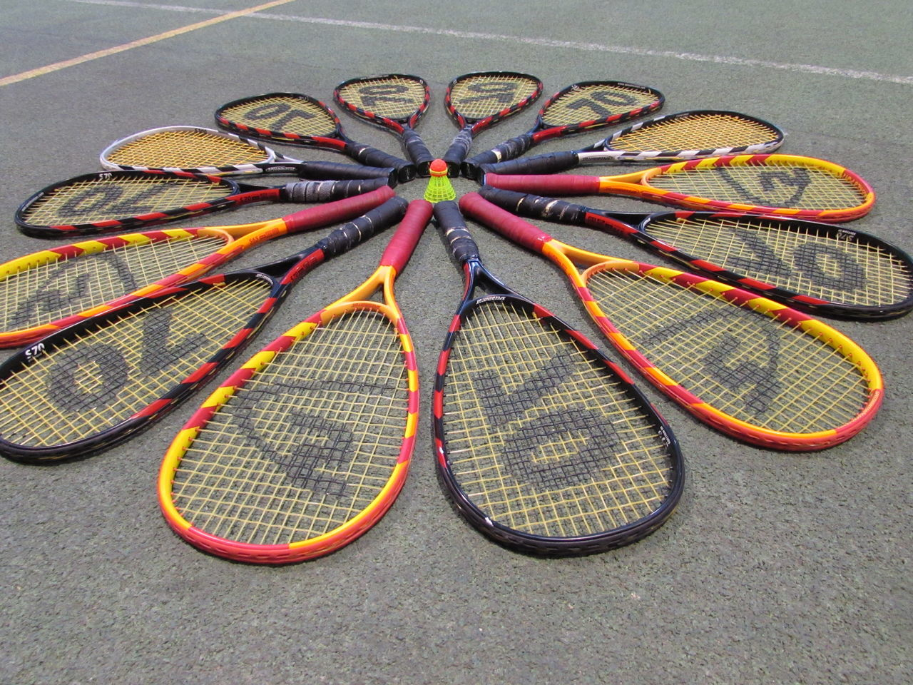 Abundance Close Up Crossminton Day Flower Front View Full Frame Full Length Holding Individuality Large Group Of Objects Looking One Person Playing Rackets Side View Speedminton Speedminton Training Sport Sports Standing