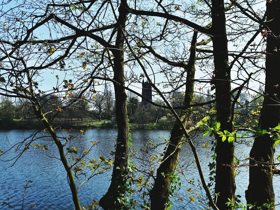 Tree Nature Water Branch Growth Lake Sky Outdoors Tranquility Beauty In Nature No People Day Church Churches Church Architecture Church Tower Church Buildings Steeple
