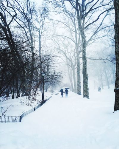 ...Through thick and thin, sunny days and blizzards. Lovers Central Park NYC Jonas Stormjonas Blizzard2016