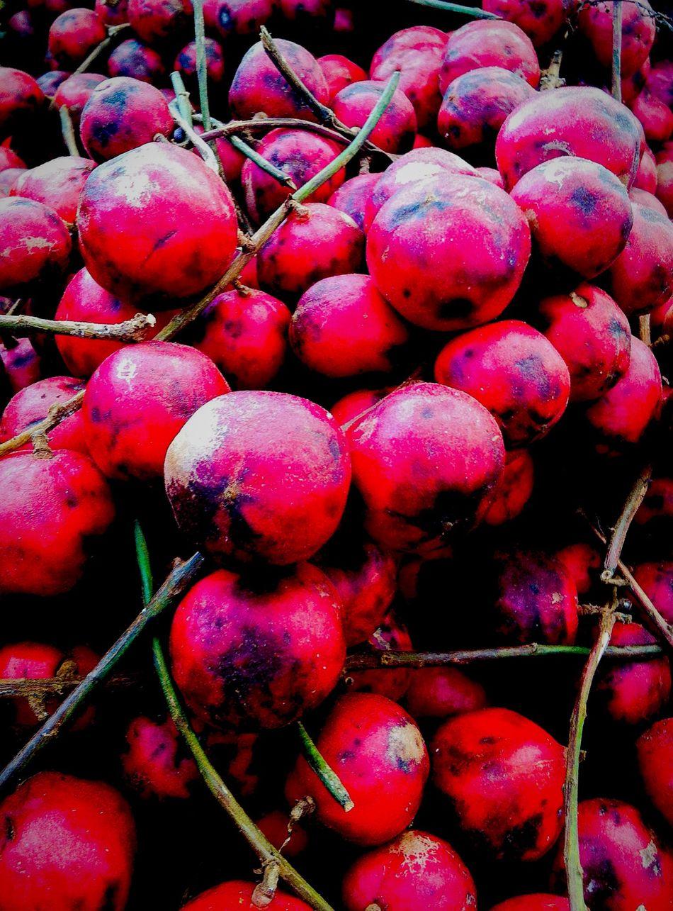 Burmese Grape-มะไฟ (Baccaurea ramiflora Fam. Phyllantgaceae) Fruit Fruitporn Rare Fruit Red Only Fruit Photography Fruit Collection IPhone Photography Fruits ♡