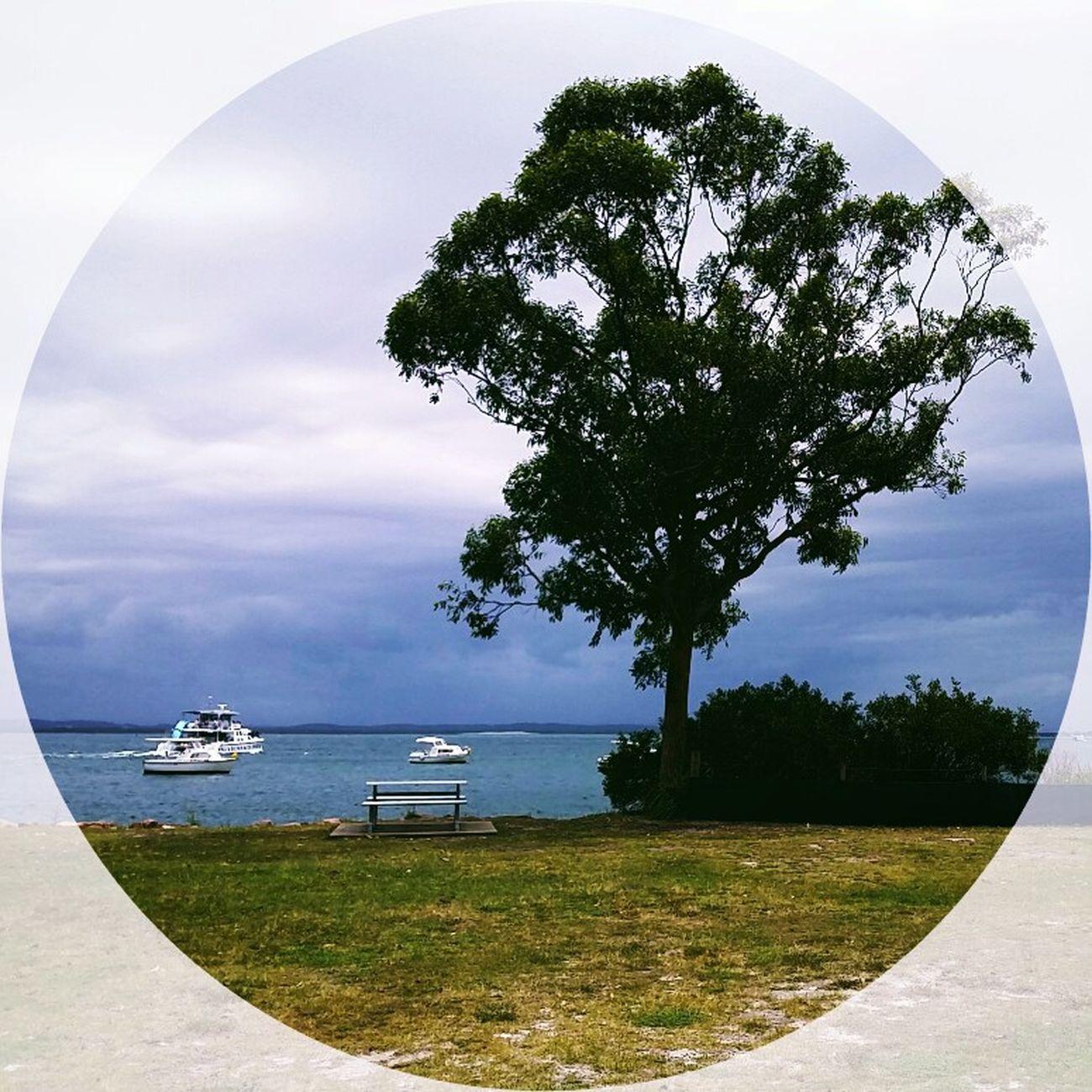 Portstephens Nelson Bay NSW Australia Australia Sky Water Trees
