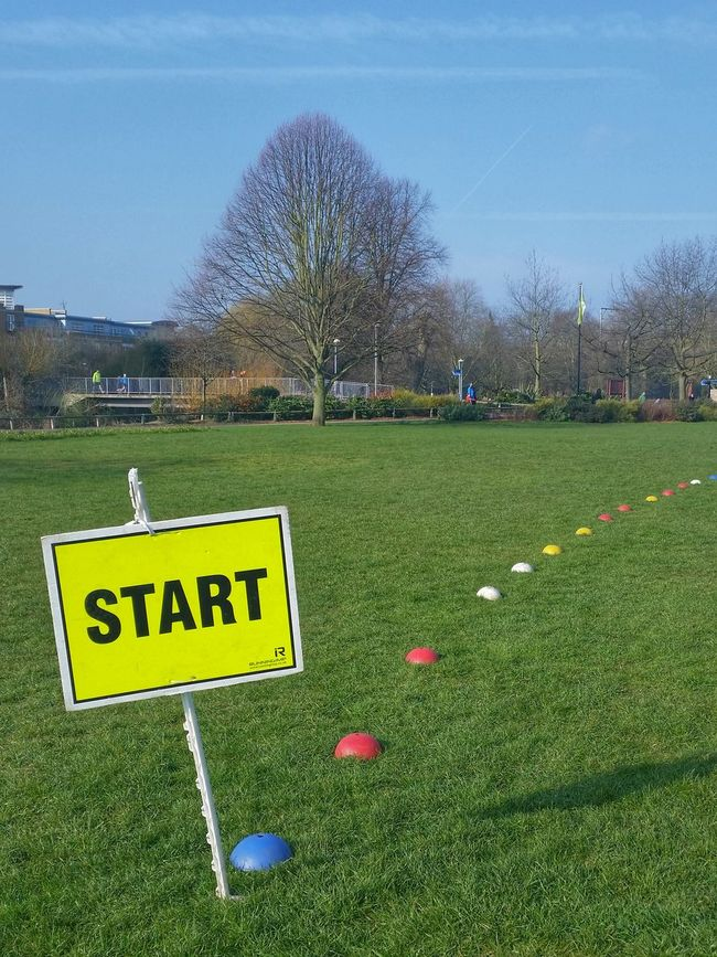 Start Sign on Grassy Field with Coloured Markers Large Tree Blue Sky Starting Line