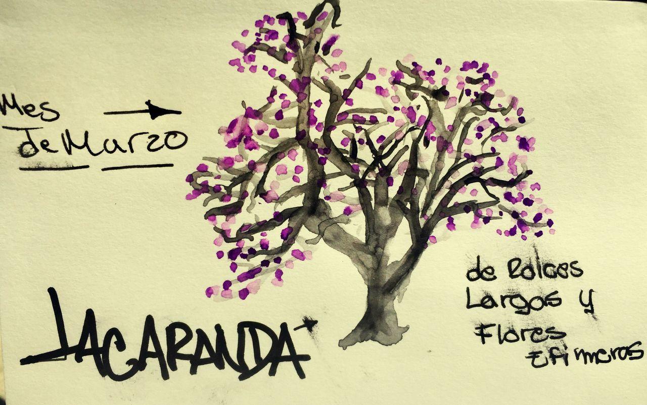 Flower Sketchbook Paper Sketching