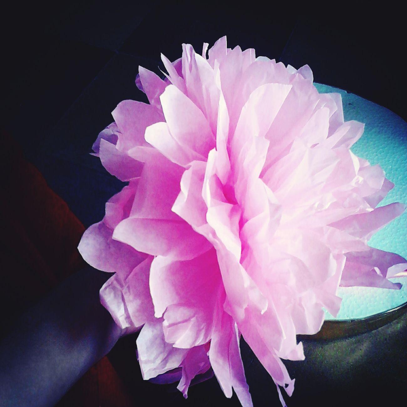 Flores que te alegran la vida Check This Out Relaxing WeFriends
