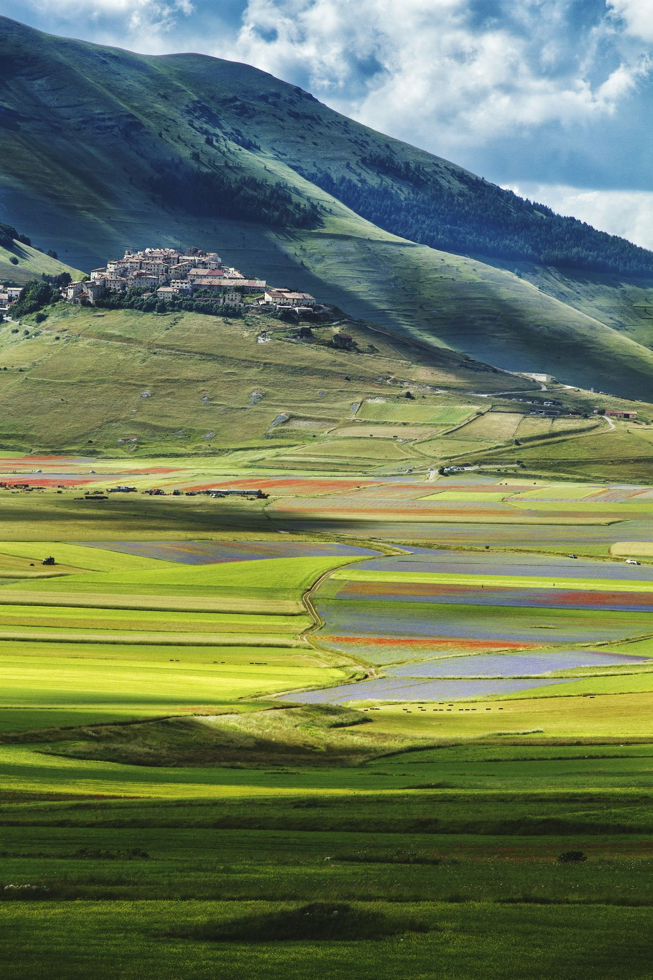 Castelluccio di Norcia Castellucciodinorcia Fioriture Color Explosion Landscape_photography EyeEm Nature Lover EyeEmbestshots Eyeemphotography Landscape_Collection Landscape #Nature #photography Nature Nature_collection Blooming Season  Landscape_photography Landscape_lovers EyeEm Gallery Naturephotography Landscapes Traveling Destination Nature Photography Vibrant Color Landscape Outdoors Relaxing Taking Photos