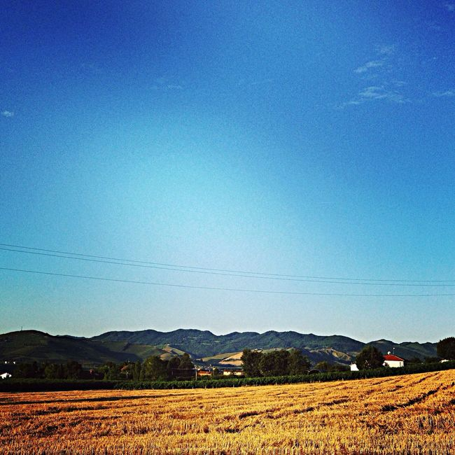 In the sun... Italy Fatherland Juli 2014