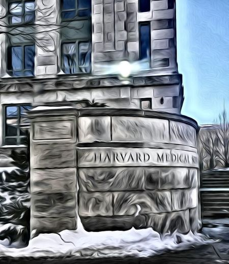 Boston Harvard Medical School No People Building Exterior Outdoors Architecture Close-up