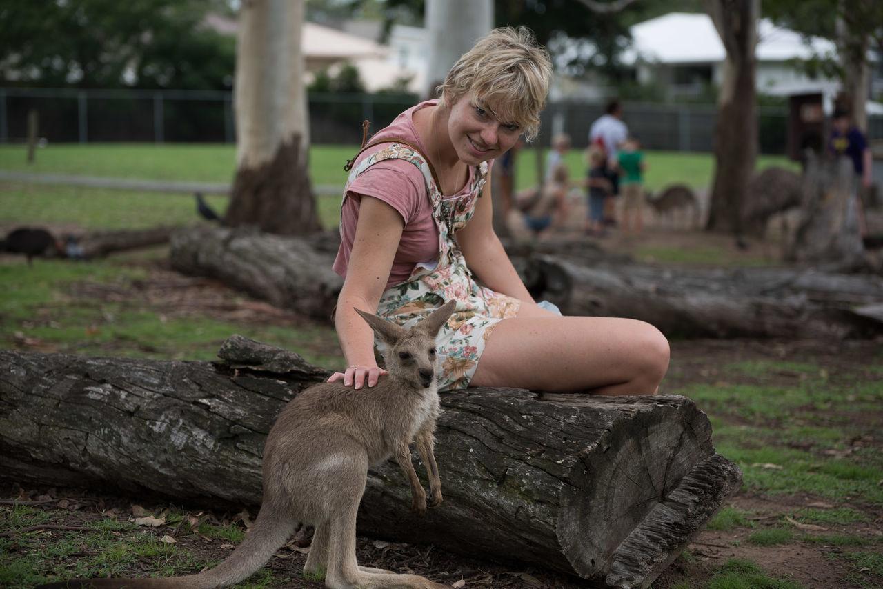 Beautiful stock photos of kangaroo, Animal Themes, Casual Clothing, Caucasian Ethnicity, Curiosity