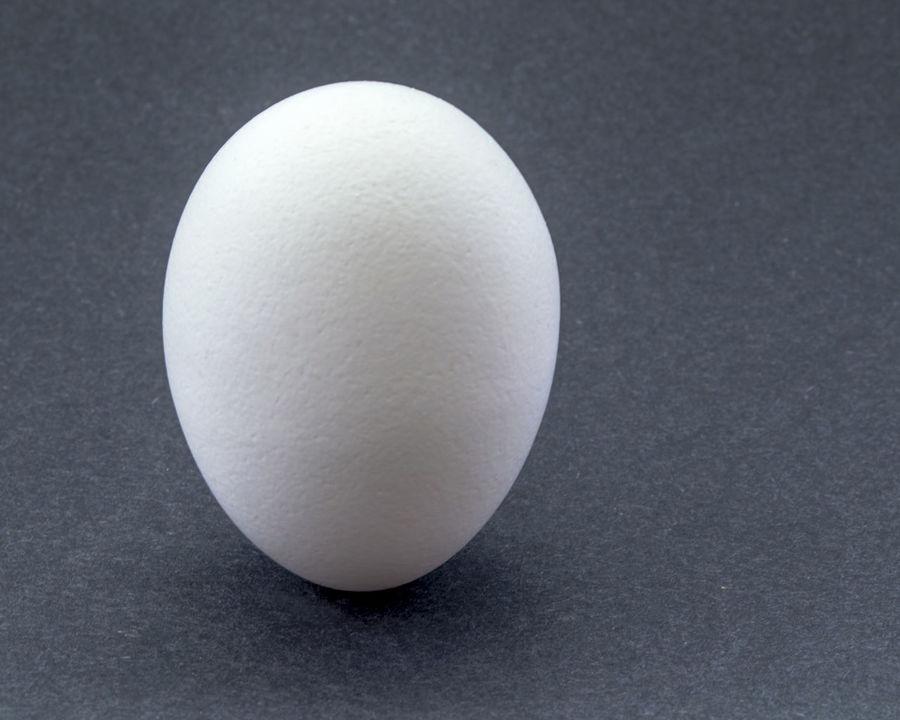 White Boiled Egg Boiled Egg Boiled Eggs Close-up Egg Food Food Photography Geometric Shape Horizontal Single Object Studio Shot Textured  White White Color White Egg White Eggs