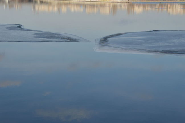 Everything That Happened On The Ice Floe