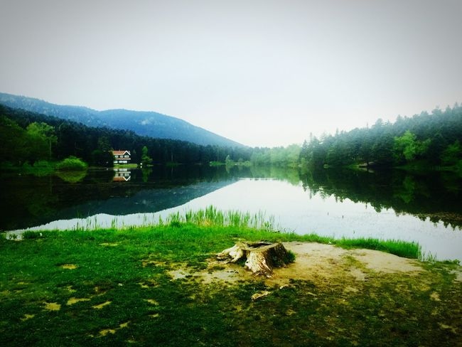 First Eyeem Photo Bolu Golcuk Bolu  View Lake View IPhoneography Nature Turkey Green Morning