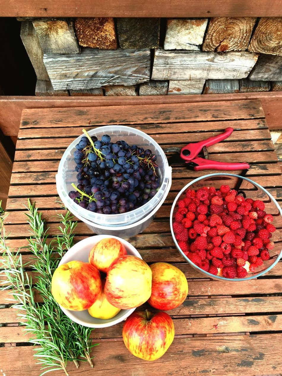 Beautiful stock photos of thanksgiving, Apple - Fruit, Bowl, Choice, Day