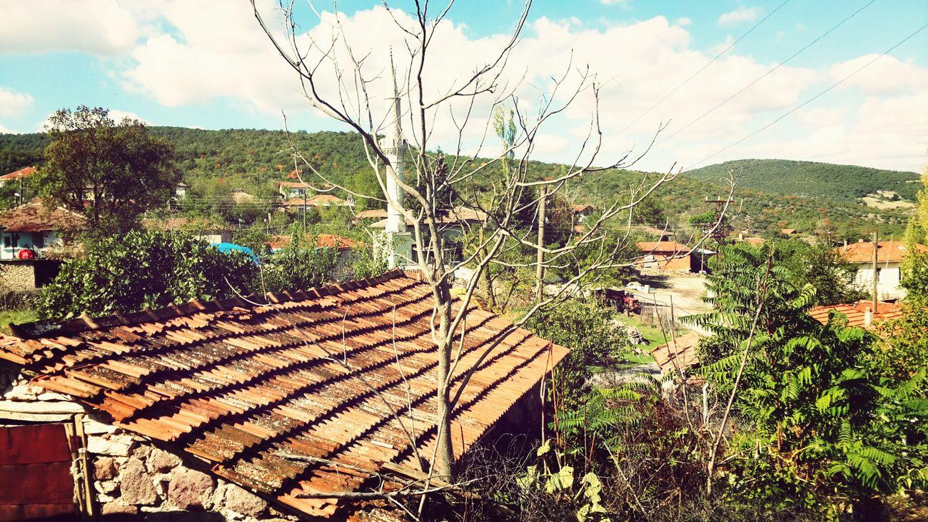 bizim köy.