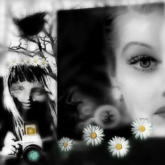 Lucilleball Digitalart  Photomanipulation Collage Digitalcollage